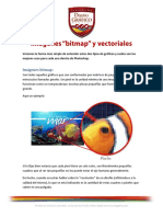 8. Qué son las imágenes bitmap y vectoriales