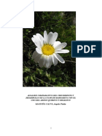 INFORME FINAL DE LA FLOR.docx