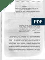 Analisis critico del WISC -  Amaya