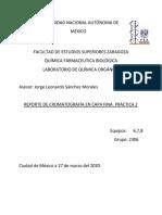 REPORTE DE CROMATOGRAFÍA EN CAPA FINA. PRÁCTICA 2
