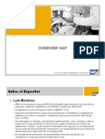 Overview SAP  version Corta