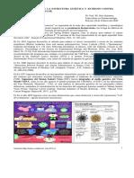 Coronavirus Mapa Genetico y antidoto del  _sirio_DOC_14.pdf.pdf