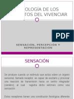 11. PSICOLOGÍA DE LOS ELEMENTOS DEL VIVENCIAR (1).pptx