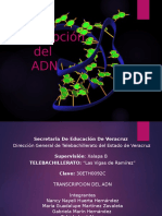 TRANSCRIPCION DEL ADN.pptx