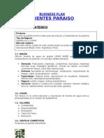 Business Plan Fuentes Paraiso Ago 07