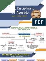PRINCIPIOS RECTORES DEL PROCESO DISCIPLINARIO DEL ABOGADO