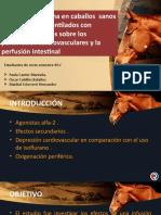 FARMACO EQUINOS.pptx