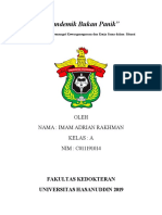 Imam adrian rakhman c011191014 A