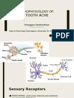 dental pain (Pengantar Neurologi)
