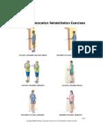 Shoulder Dislocation Rehab Exercise