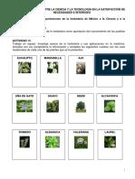 cuadernillo de trabajo biologia RECUPERACION.pdf
