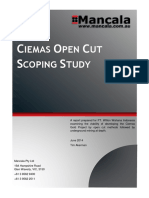 Ciemas-Open-Cut-Scoping-Study.pdf
