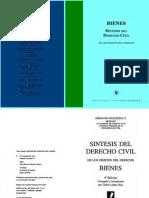 Sintesis Del Derecho Civil - Bienes - Abraham Kiverstein h