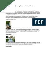 8 Desain Kolam Renang Kecil untuk Relaksasi(1)