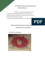 Inhal pretest muskulo dan pretest kardio & endokrin fkg.pdf