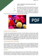 Biologia - portaltosabendo - Célula Tronco e Revolução da Vida