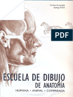 Andras Szunyoghy -Escuela de Dibujo de Anatomia Humana y Animal