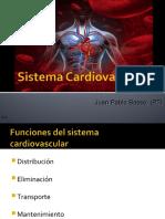2.1 Sistema Cardiovascular modificada.ppt