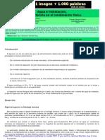 EL_AGUA_E_HIDRATACION_Y_SU_IMPORTANCIA_EN_EL_RENDIMIENTO_FISICO