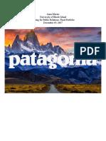 patagonia mockportfolio