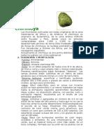 Arboricultura - Cultivo de la Chirimoya