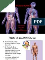 anatomiabasica-140914120615-phpapp02.pdf