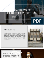 PRINCIPIOS PROCESALES DEL DERECHO PROCESAL