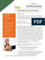 Boletin _Fusion de sociedades.pdf