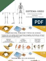 439990775-Diapositivas-de-Acondicionamiento-Fisico.pdf