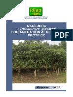 nacedero_forrajera_con_alto_valor_proteico