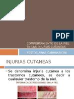 261093761-injurias-cutaneas.pptx