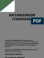 KATABOLIZM_GLYuKOZY