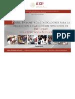 PPI_PROMOCION_DIRECCION_EMS_2019_FEB19_20190201.pdf