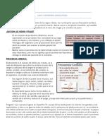 01 - Clase cirugÃ_a signos vitales