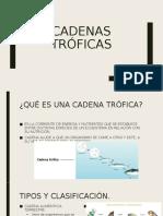 CADENAS TRÓFICAS.pptx
