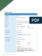 Summary-report-55895014.pdf
