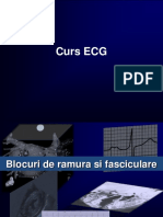 97693374-ECG-Curs-Aritmii