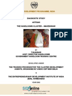 Diagnostic Study Report on the Handloom Cluster - Maheshwar