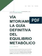 VÍA MTORAMPK LA GUÍA DEFINITIVA DEL EQUILIBRIO METABÓLICO