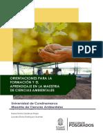 A19. Manual de Orientaciones Para Docentes en Formación y Aprendizaje