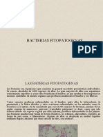 Clase9 Bacterias.ppt