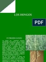 Clase7 Hongos.ppt