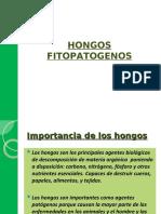 hongos fitopatogenos.ppt
