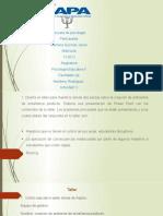 tarea 5 de psicologia educativa2