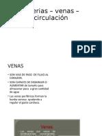 23 Arterias – venas – circulación