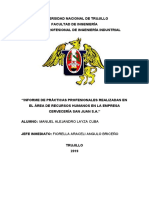 INFORME DE PRÁCTICA PROFESIONALES- Alejandro Layza