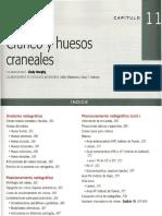 Cap 11 Craneo y Hesos Craneales.pdf