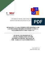 Tesis_Jaime_Guillen_2008.pdf