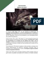 CASO DE ESTUDIO CAFE NEGRO S.A..pdf