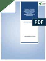 reporte final Capitulo-1-OPERACIONES-Y-PRODUCTIVIDAD.pdf